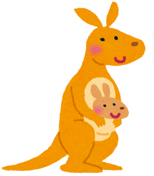 animal_kangaroo.png