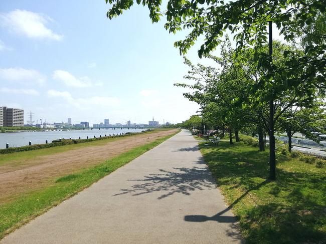 jogging20190512.JPG