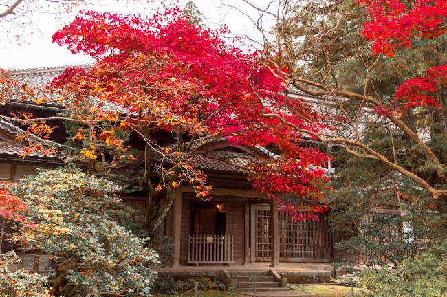 sekiyunosato2014-121.JPG