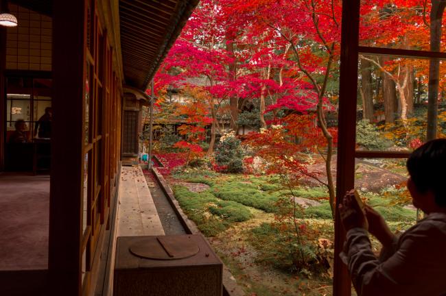 sekiyunosato2014-144.JPG