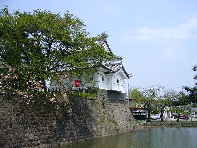 shibata01.jpg