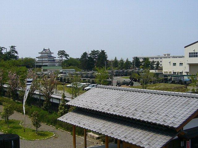 shibata06.jpg