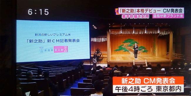 shinnosuke1011_09.JPG