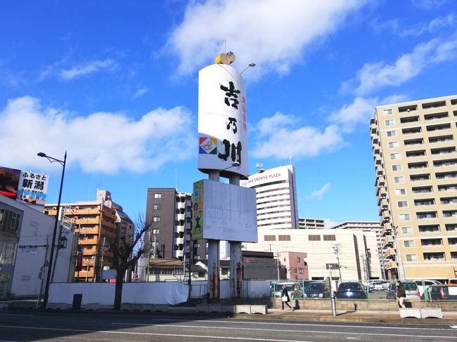 yoshino02.JPG
