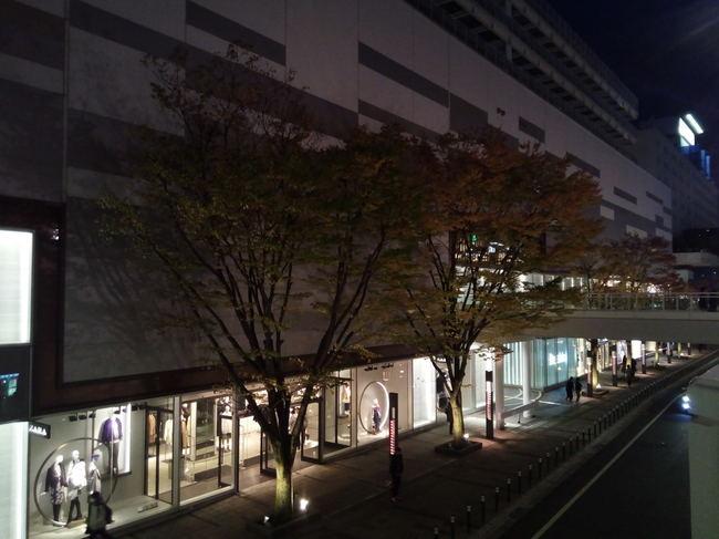 yukitubaki_18.JPG