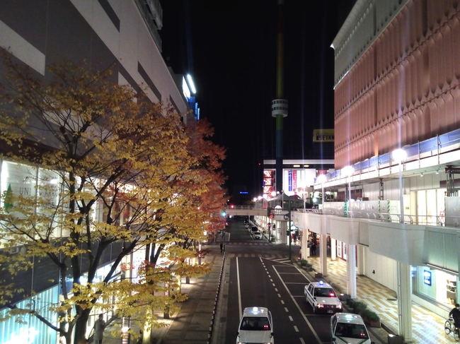 yukitubaki_23.JPG