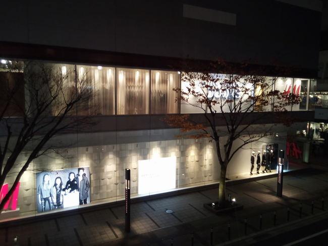 yukitubaki_25.JPG