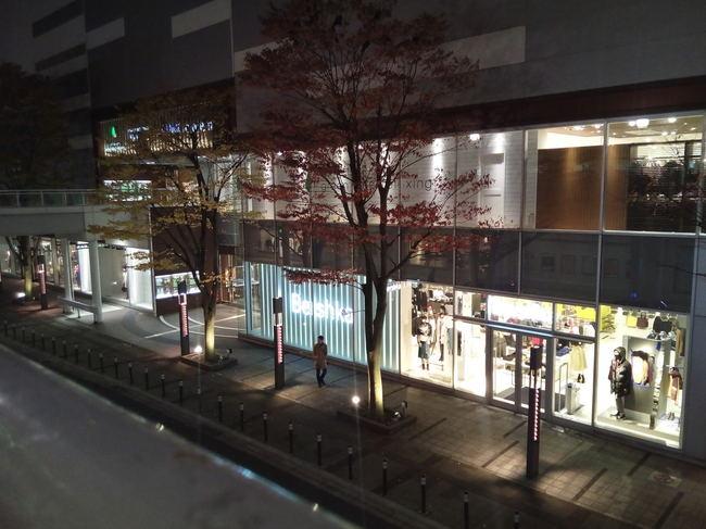 yukitubaki_31.JPG